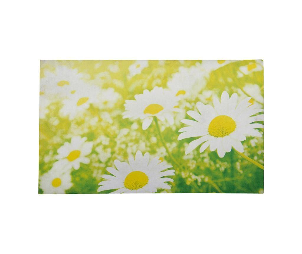Wycieraczka Daisy 45.5x76 cm