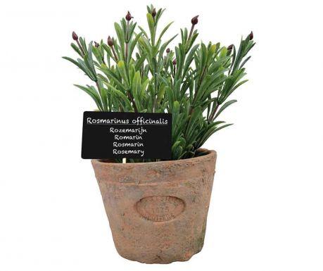Τεχνητό φυτό σε γλάστρα Rosemary