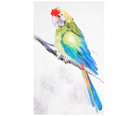 Parrot Festmény 50x80 cm