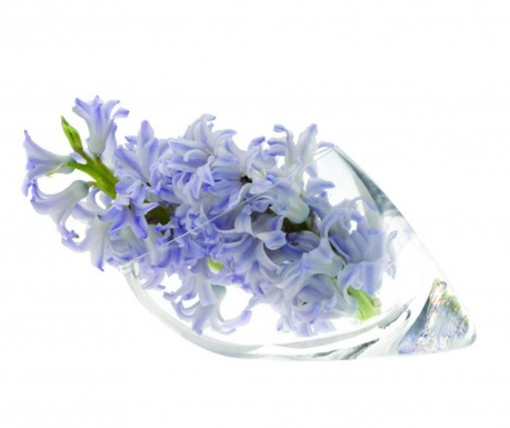 Váza Seashell M