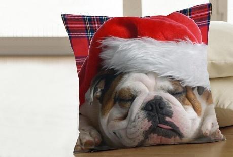 Domowe Święta