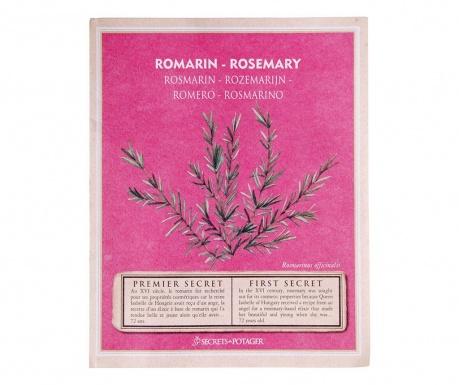 Balíček semínek rozmarýnu Growing Healty Rosemary