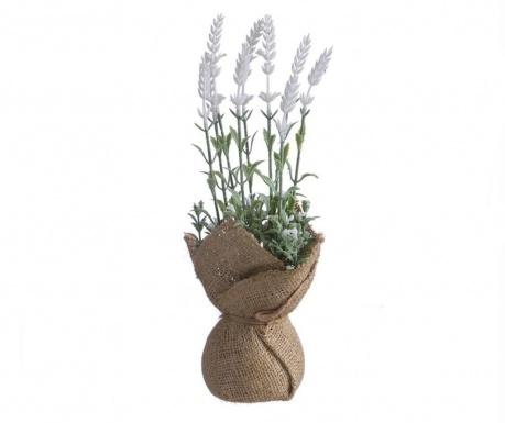 Lavanda Tela White Műnövény virágcserépben