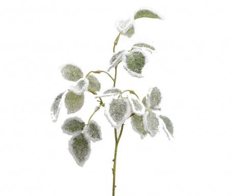 Icerose Műnövény
