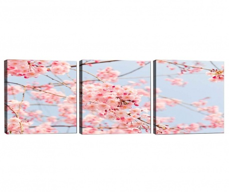 Sada 3 obrazov Cherry Tree 30x30 cm