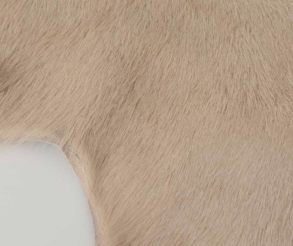 Isabelle Ivory Szőnyeg 60x90 cm
