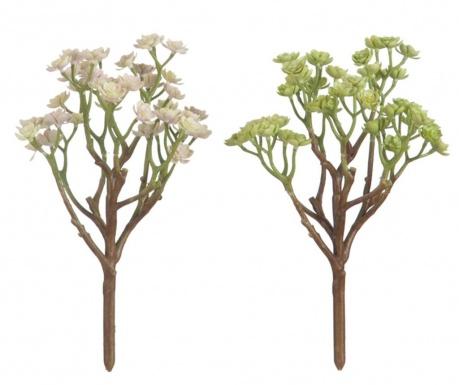 Set 2 umjetna cvijeta Succulent Green