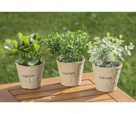 Set 3 plante artificiale in ghiveci Eucalytus