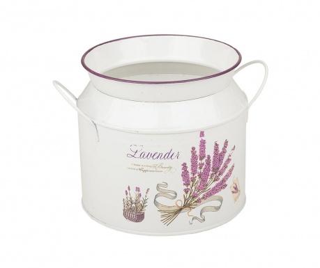 Lavender Beauty Virágcserép