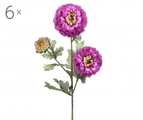 Dahlia Violet 6 db Művirág