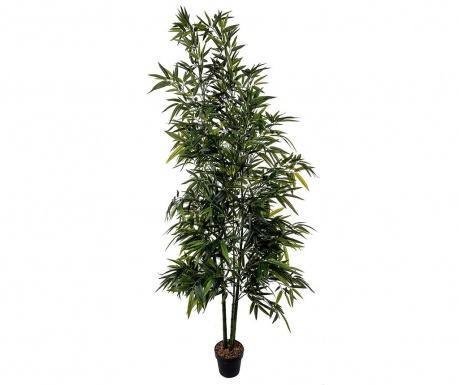 Umělá rostlina v květináči Bamboo in a Vase