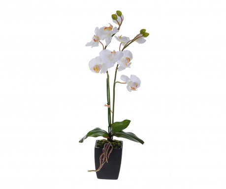 Umělá květina v květináči Orchid Pot