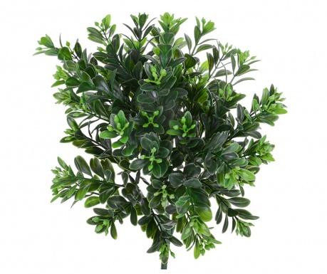 Umělá rostlina Bossolo Piantina