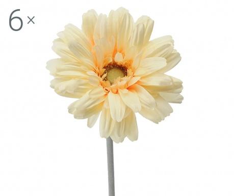 Sada 6 umělých květin Transvaal Daisy Yellow