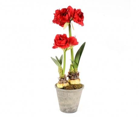 Umělá květina v květináči Amaryllis Doppio Red