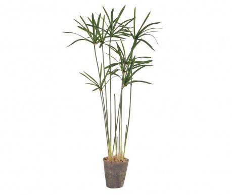Umělá rostlina v květináči Paper Reed in a Pot