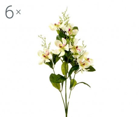 Zestaw 6 kwiatów sztucznych Orchidea Vanda Green