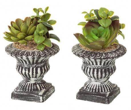 Set 2 plante artificiale in ghiveci Antique