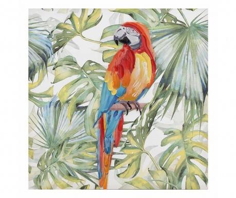 Parrot Kép 80x80 cm