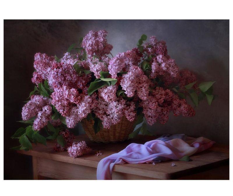 Obraz Lilac 80x120 cm
