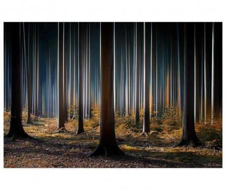 Obraz Forrest