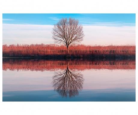 Obraz Mirror