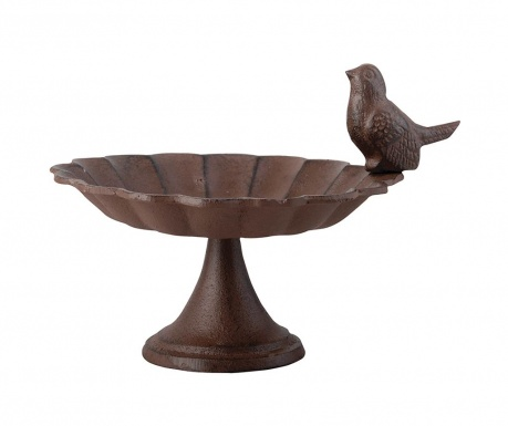 Ptičja kopel Ambons