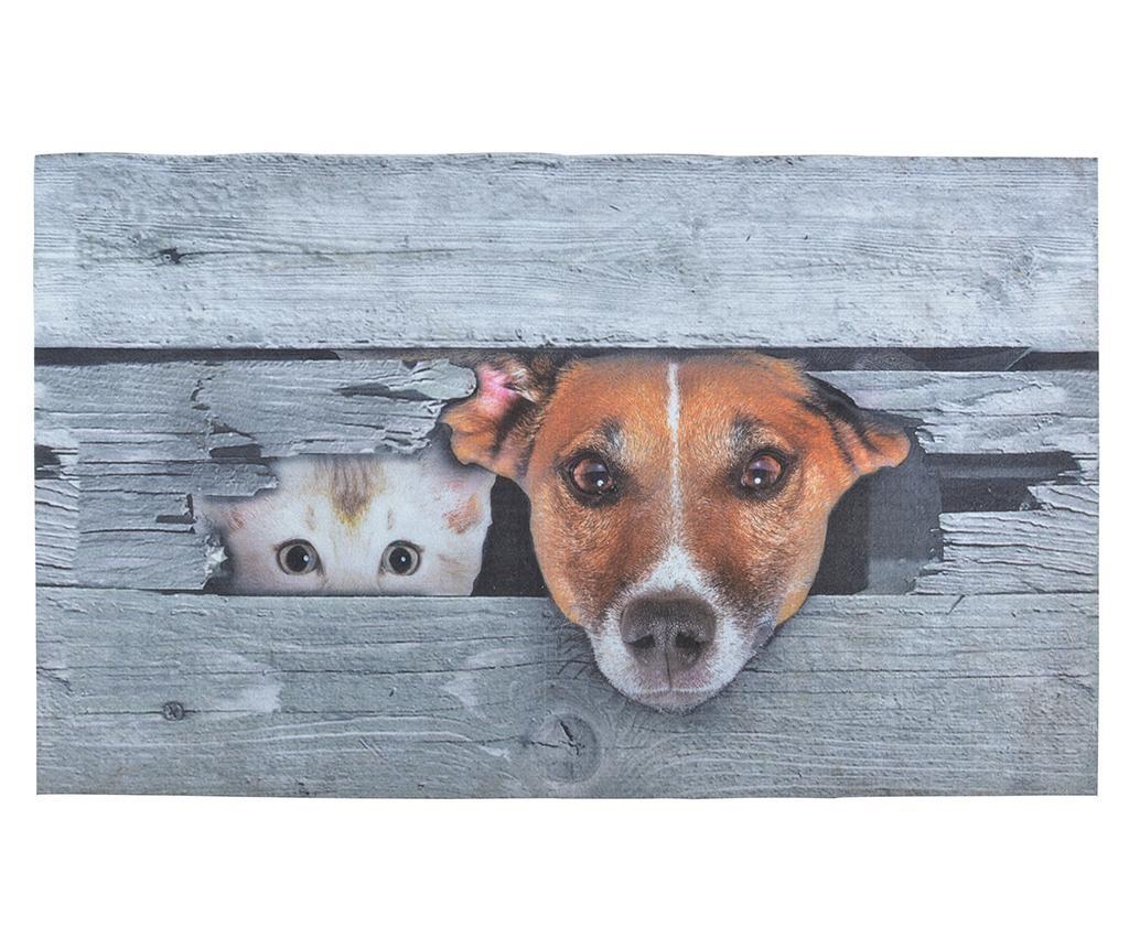 Wycieraczka Dog And Cat 45.4x75 cm