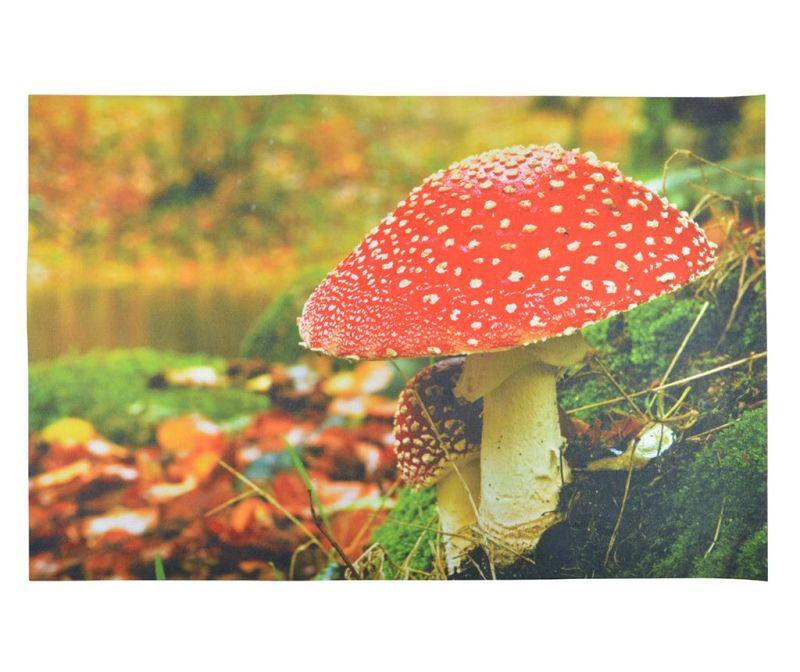 Predpražnik Mushroom 59.5x90.5 cm