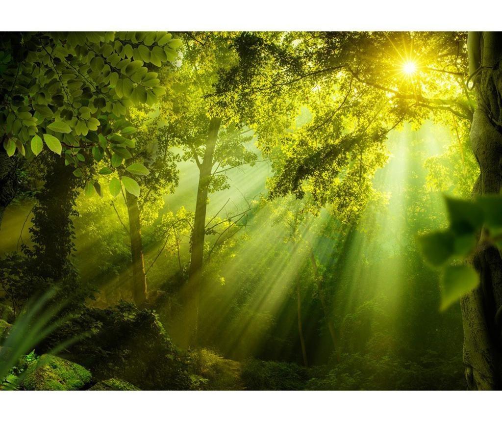 In a Secret Forest Tapéta 105x150 cm