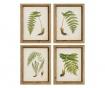 Slika Fern Leaf Right 43x55 cm