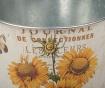 Ghiveci Sunflower