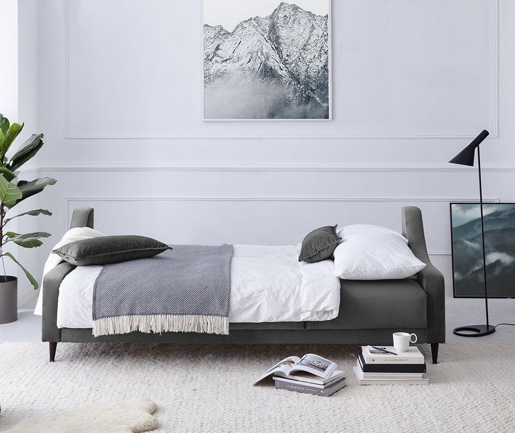 Canapea extensibila 3 locuri Freesia Grey