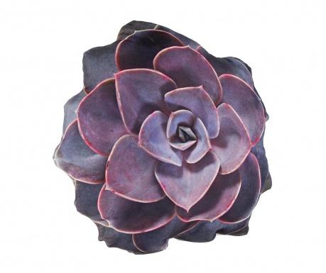 Poduszka dekoracyjna Optic Echeveria Succulent 60 cm