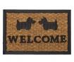 Covoras de intrare Welcome Bristol 40x60 cm