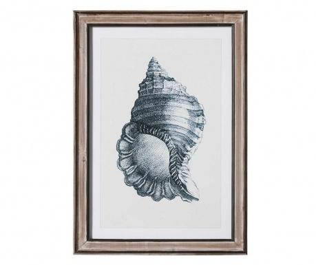 Картина Shell Round 50x70 см